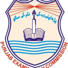 All Punjab Districts PEC 5th Class Date Sheet 2021