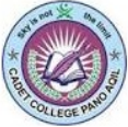 Cadet College Pano Aqil Admission 2021, Online Form & Merit List