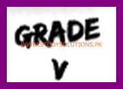 PEC 5th Class Model Papers 2021, Download Punjab Examination Commission Sample Papers