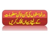 Punjab Workers Welfare Board Talent Scholarship 2020, Form