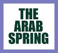 Real Story Behind Arab Spring (Autumn)