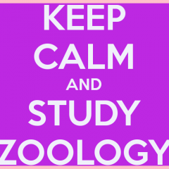 Zoology Definition, Jobs, Scope, Career, Nature of Work & Required Skills