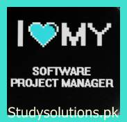 Scope of Software Project Management, Jobs, Tips, Work Nature, Degrees & Required Skills