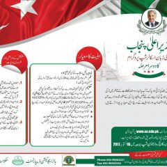 CM Punjab Turkish Language Scholarship Program 2020