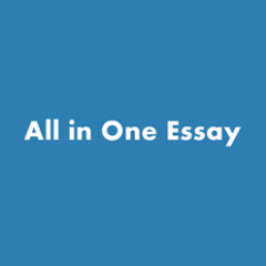 All in One English Essay on Any Festival For Class 8th To BA