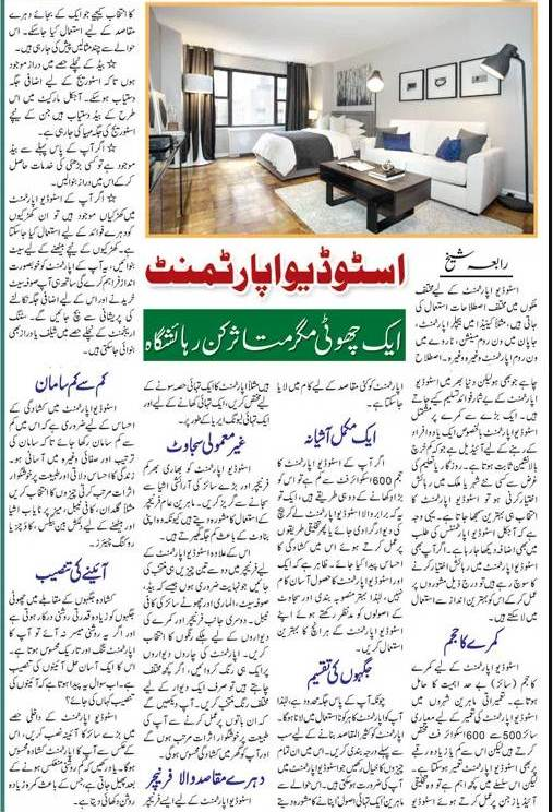 How to Decorate a Studio Apartment? Tips & Design Ideas (English & Urdu)
