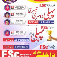 The Peace Group of Schools & Colleges KPK Admission 2021, Scholarships